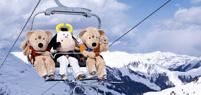 Kinderland Ski Arena